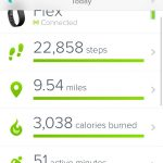 This was a fairly busy day about a month after getting my Fitbit Flex.